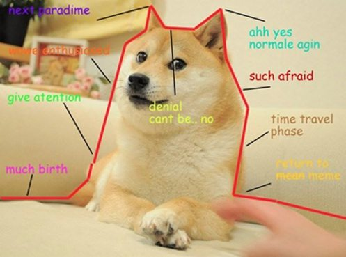 dogegraphh